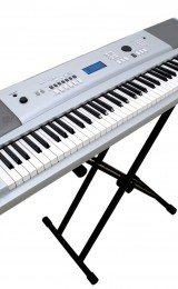 delos de teclado musical