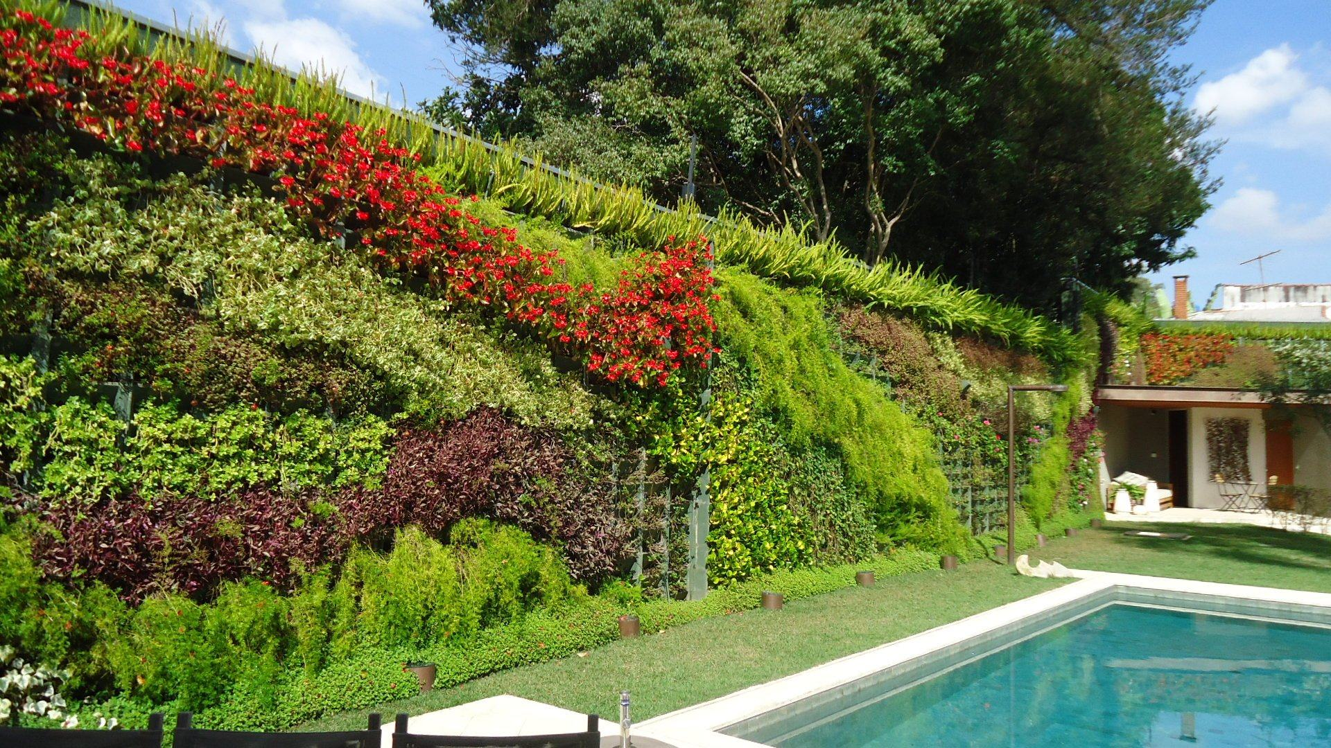 jardim vertical no sol:Lindas fotos jardim vertical na parede