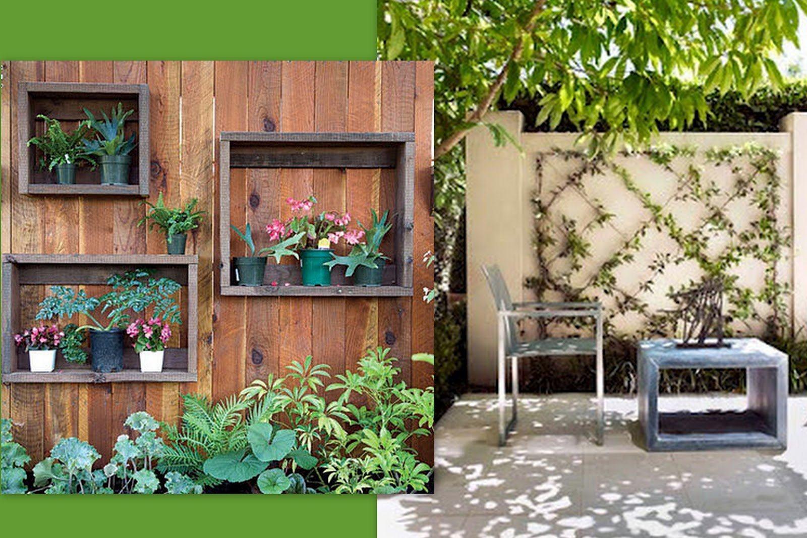 jardim vertical fotos : jardim vertical fotos:Lindas fotos jardim vertical na parede