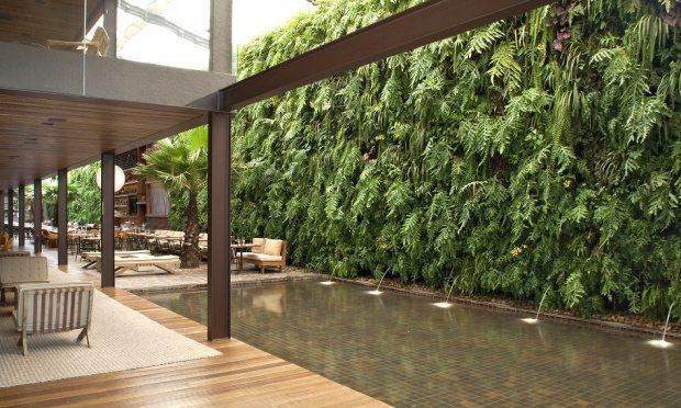 jardim vertical no sol:jardim vertical