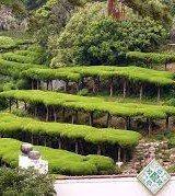 belo jardins japoneses