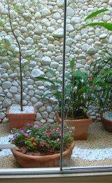 imagen de jardim de inverno
