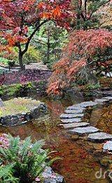 modelos de jardins japoneses