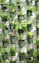 imagens de jardins suspensos