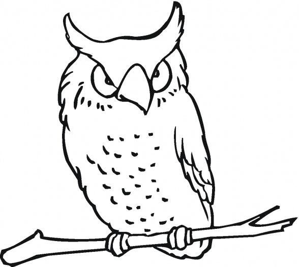 Desenhos De Corujas Para Pintar E Imprimir Para Criancas Jet Dicas